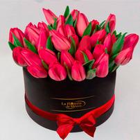 Caja Negra de Tulipanes, Mexico